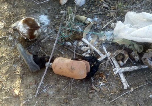 Restos mortais são encontrados ao lado de prótese de perna na zona rural