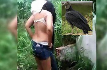 Mulher com mal cheiro nas partes íntimas é atacada por urubus durante relação com namorado no mato