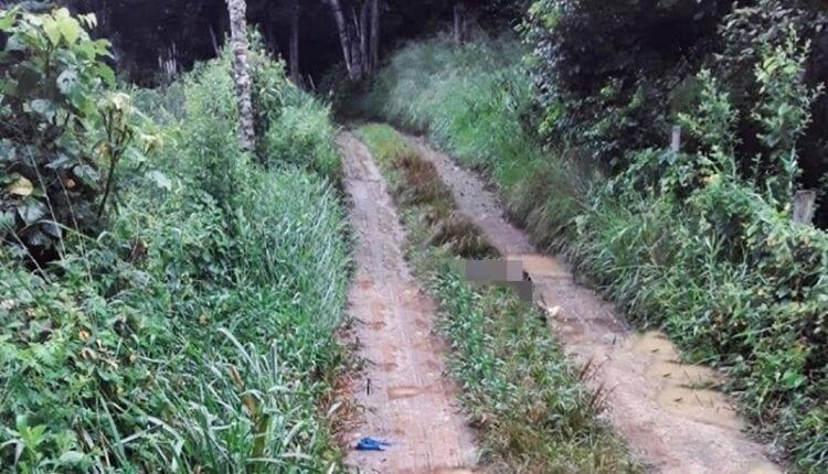 MISTÉRIO: Três pessoas são encontradas mortas em estrada vicinal